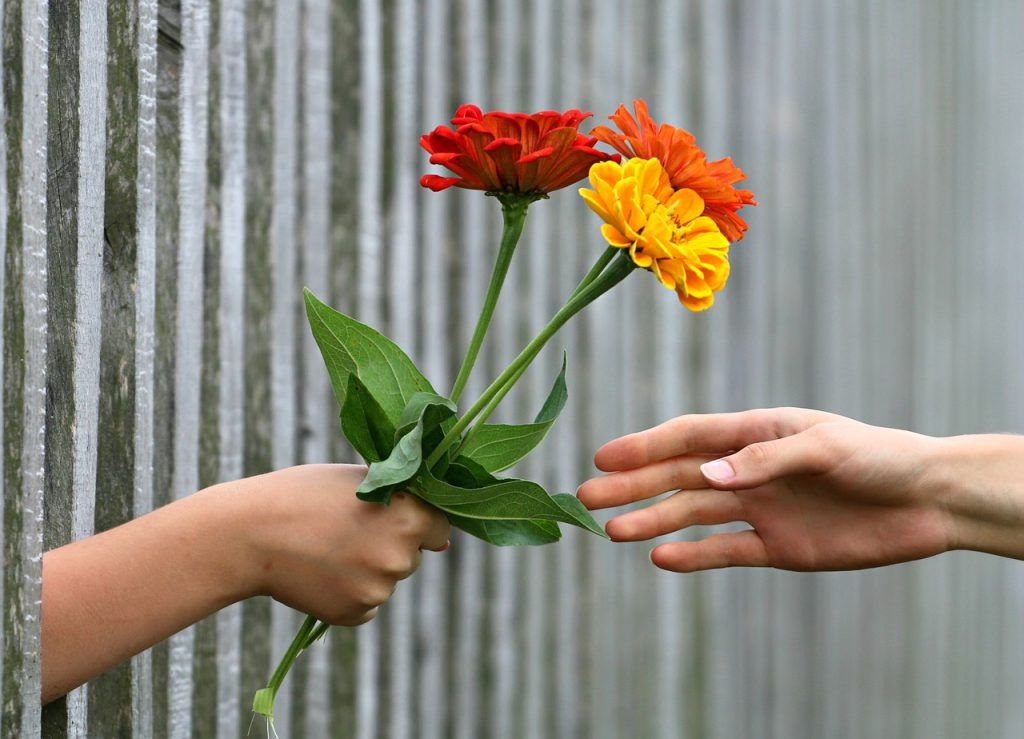 hand, bouquet, fence